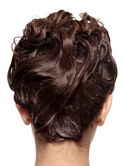 Rear view of woman's head with wet hair