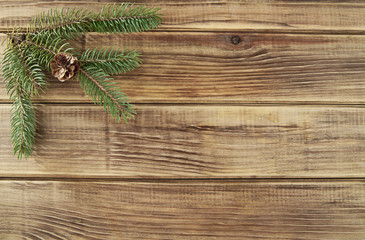 branches of fir-tree
