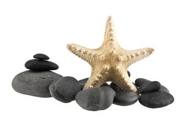 stone and starfish