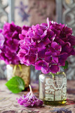 hydrangea flowers in a vase on a table .