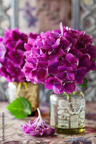 Keuken foto achterwand Hydrangea hydrangea flowers in a vase on a table .