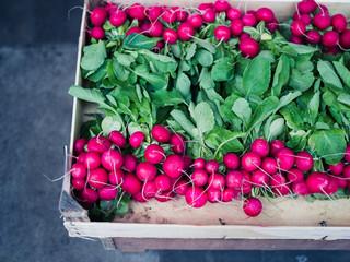 Radishes in box at market