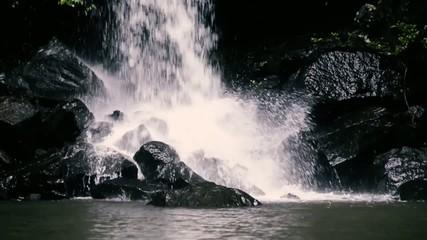 Curtis Falls waterfall in Mount Tambourine. Waterfall in the gol