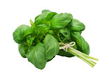 Fresh green basil isolated on a white background