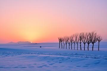 雪原・朝焼けの夜明け