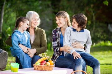 Family Enjoying Picnic In Park