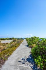沖縄県 鳩間島の道