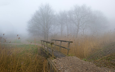 Wooden bridge in a foggy landscape in winter