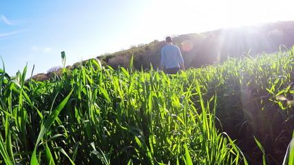 Man walking through a meadow