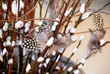 Willow twigs with spotted feathers as decorations.