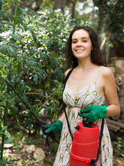 Girl gardener spraying tomato plant