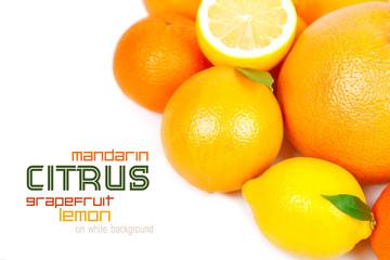 Grapefruit, tangerine, lemon, orange