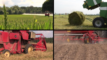 Field spray. Sodder bales. Harvesting. Fertilize soil. Collage