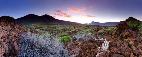 Tenerife Teide National Park