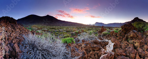 Fotobehang Vulkaan Tenerife Teide National Park