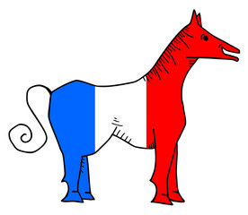France horse