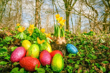 Easter eggs in a forest