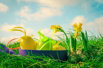 Easter photo with eggs and daffodils