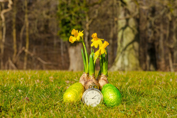Easter time with daffodils and eggs