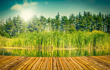 Bridge by a lake
