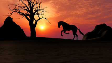 Horse Running under Sunset in the Desert