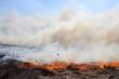 Пожар в степи - 80030845