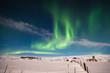 aurora borealis on white snow landscape - 80032676