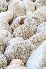 variety of oval stones in  garden