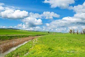 Sardegna, campagna della Trexenta in primavera