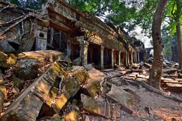 Ta Phrom temple ruins in Angkor, Siem Reap, Cambodia