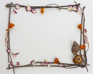Natural frame concept dry flower