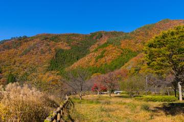 日光市 五十里湖周辺の紅葉