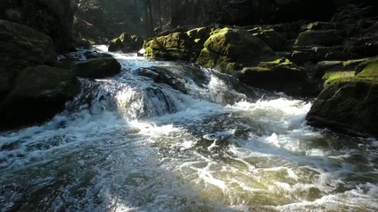 Wild river with rocks covered with moss