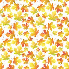 Autumn Maple leaves pattern