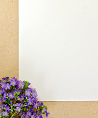Frame purple wildflowers and paper