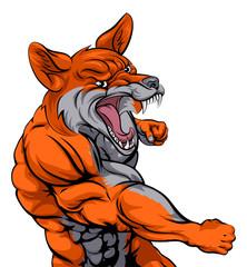 Fox sports fighting