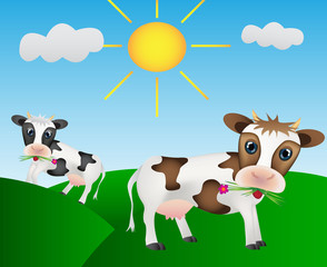 Happy cows on the meadow with sun