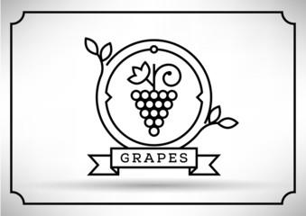 Linear Grape Vector Icon