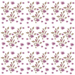 Xeranthemum annuum flower pattern