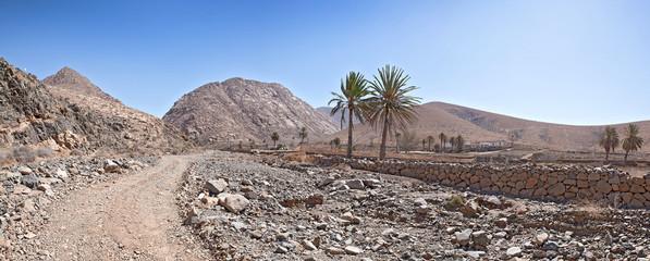 Fuerteventura - Landschaft nahe Buen Paso