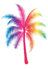 palma arcobaleno