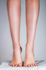 Beautiful female legs .