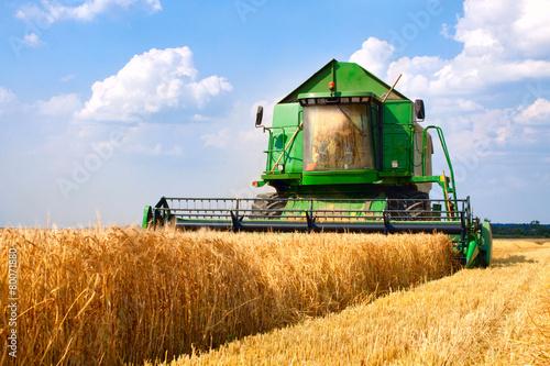 combine harvester - 80071880