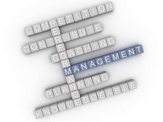 3d image Management  issues concept word cloud background