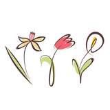 outlined hand drawn flower collection, design elements set - 80080244