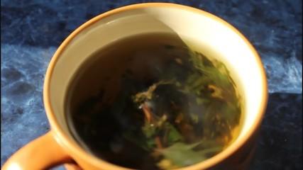 Brewing motherwort herb