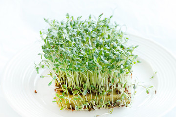 Fresh green watercress  on plate