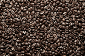 Coffee beans on closeup background