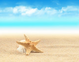 Fototapety Summer beach. Starfish and seashell on the sand.