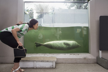 A woman crouching by a marine tank at an aquarium exhibit.  An animal in the water.